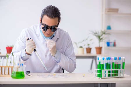The young male chemist working in the lab Banco de Imagens