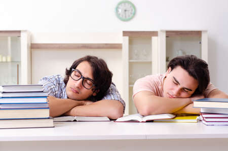 Two male students preparing for exams at home Stok Fotoğraf