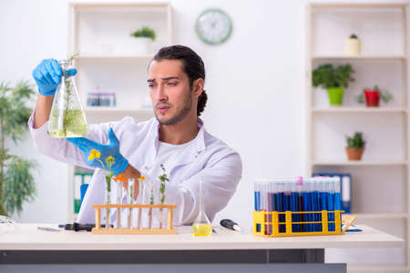 Young male chemist working in the lab