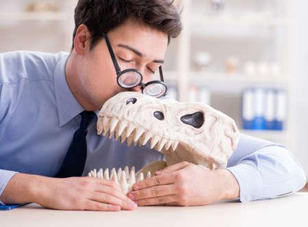 Funny crazy professor studying dinosaur skeleton 版權商用圖片