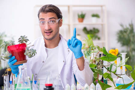 Young male chemist working in the lab 스톡 콘텐츠