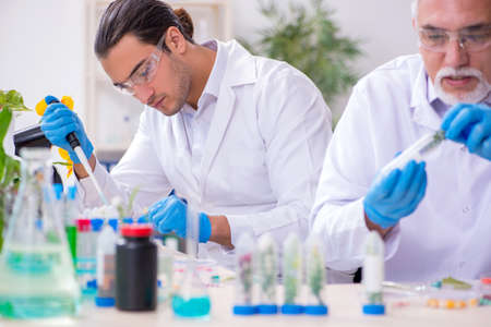 Two chemists working in the lab Stock fotó