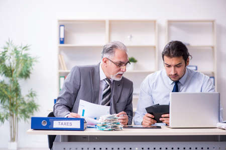 Two accountants working in the office