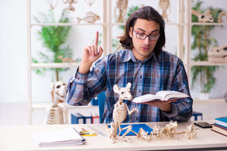 Young male teacher paleontologist in the classroom