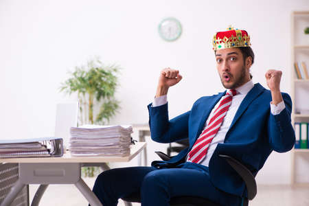 Young king businessman employee working in the office
