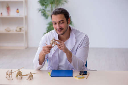 Young male zoologist examining mice at lab