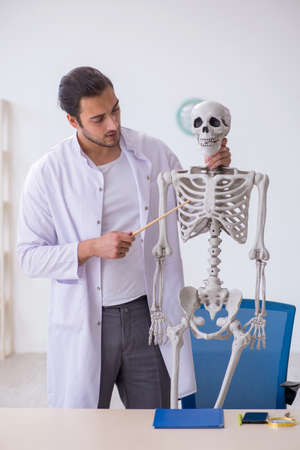 Young male doctor demonstrating human skeleton