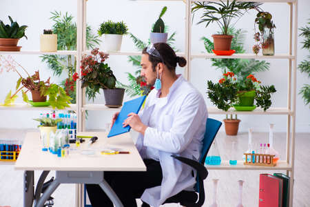 Young male chemist perfumer working in the lab