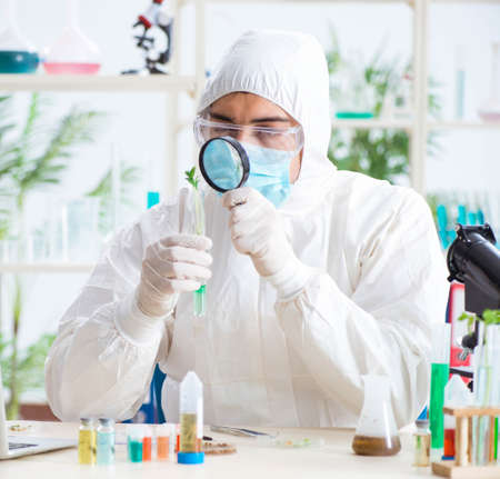 Male biochemist working in the lab on plants 写真素材