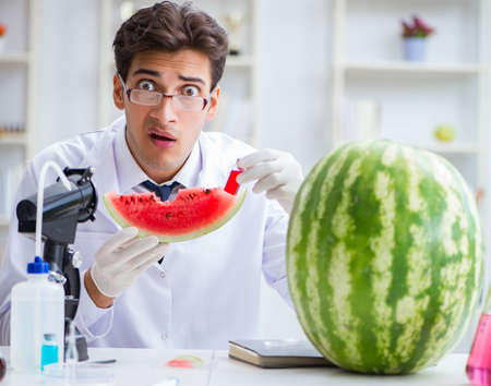 Scientist testing watermelon in lab Reklamní fotografie