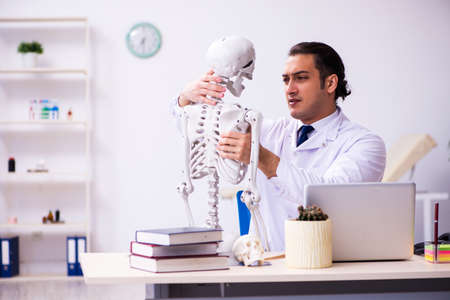 Young male doctor studying human skeleton