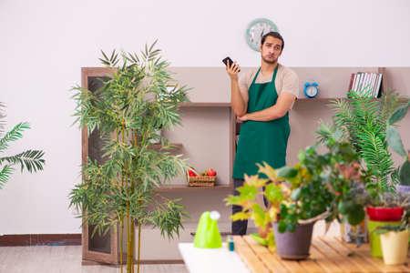 Young male gardener with plants indoors Stock fotó
