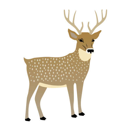 Cute deer vector illustration. Illustration