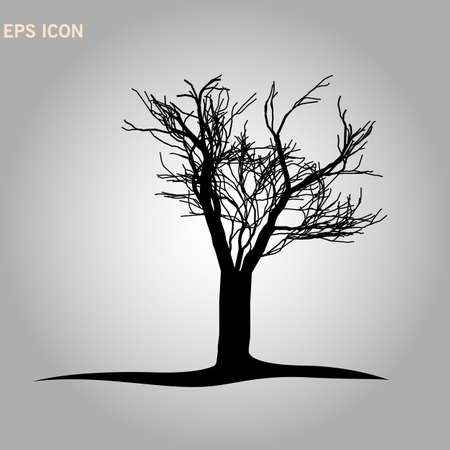 Architectonics of the crown of Norway maple. The structure of the tree branches and trunk of a rectangular shape. Vector drawing of the tree on a white background eps10 Illustration