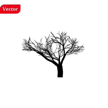 Tree silhouettes on white backgrund. Vector illustration. eps10