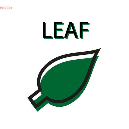 leaf vector icon on white background eps10
