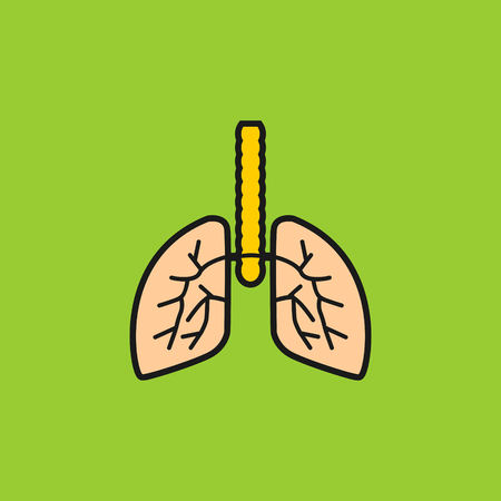 Lungs with bronchi vector icon