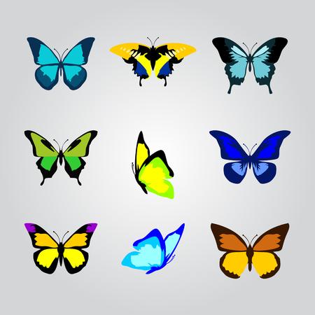 Butterflies vector icon Stock Illustratie