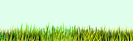 Grass vector icon