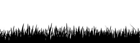 Grass vector icon Stockfoto - 121493769