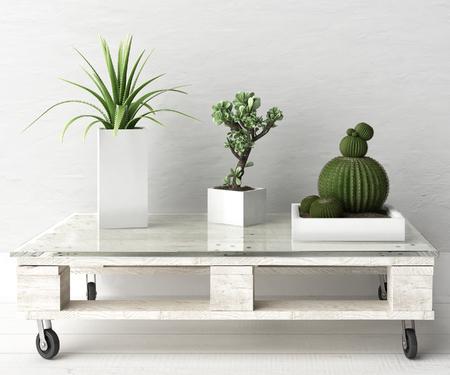 팔레트 테이블에 다육 식물 스톡 콘텐츠 - 65175273