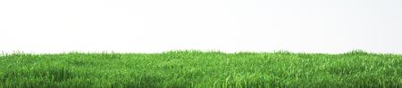 부드러운 잔디 필드, 전망보기 스톡 콘텐츠 - 68968211