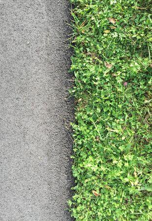 잔디, 탑 뷰, 근접 촬영 길가