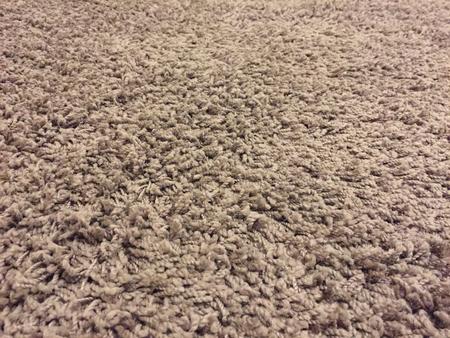 전망보기 카펫, 모피, 근접 촬영