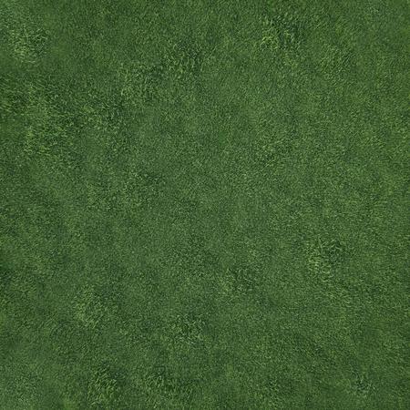 부드러운 잔디 필드, 상위 뷰