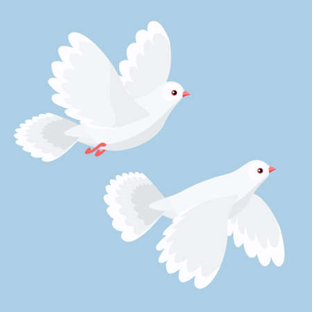 bird fly: Vector illustration of two cartoon doves flying Illustration