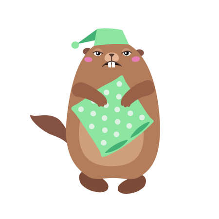 Vector illustration of groundhog holding a pillow. Flat style Illustration