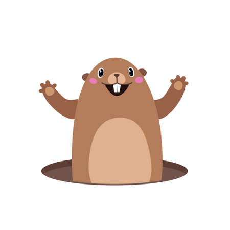 Vector illustration of groundhog popping out of his hole. Flat style Illustration