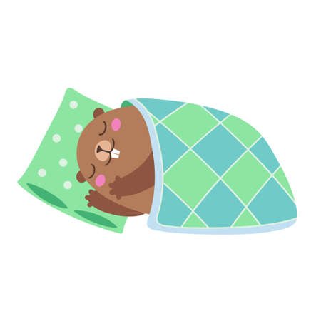 Vector illustration of groundhog sleeping under a blanket. Flat style