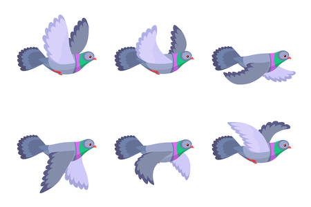 Vector illustration of cartoon flying pigeon animation sprite isolated on white background