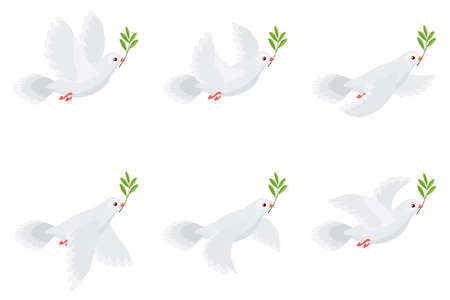 Vector illustration of flying dove holding olive branch. Sprite sheet isolated on white background. Can be used for GIF animation Illustration