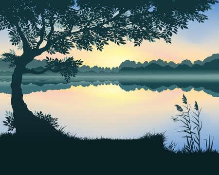 Vector illustration of landscape with a lake at dawn Ilustração