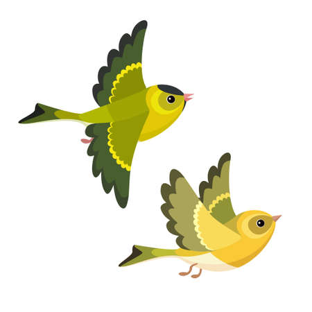 Vector illustration of cartoon flying European Siskin pair isolated on white background