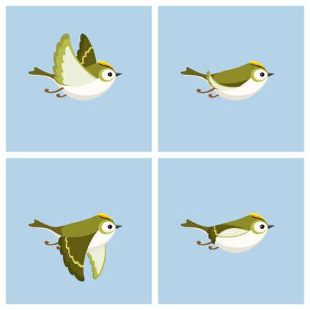 Illustrazione vettoriale del foglio di sprite Goldcrest (maschio) volante del fumetto. Può essere utilizzato per l'animazione GIF Vettoriali