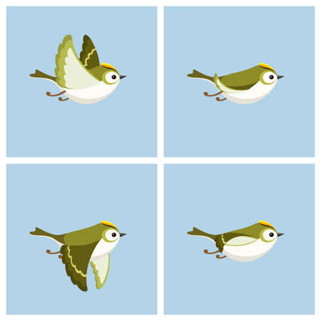 Vector illustration of cartoon flying Goldcrest (male) sprite sheet. Can be used for GIF animation