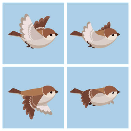 Vector illustration of cartoon flying House Sparrow (female) sprite sheet. Can be used for GIF animation