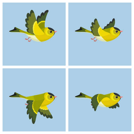 Vector illustration of cartoon flying European Siskin (male) sprite sheet. Can be used for GIF animation