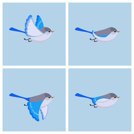 Illustration vectorielle de dessin animé volant Splendid Fairy Wren (femelle) feuille de sprite. Peut être utilisé pour l'animation GIF