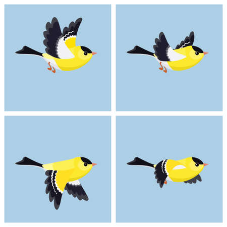 Vector illustration of cartoon flying American Goldfinch (male) sprite sheet. Can be used for GIF animation Stockfoto - 122955630