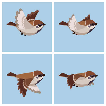 Vector illustration of cartoon flying Tree Sparrow sprite sheet. Can be used for GIF animation