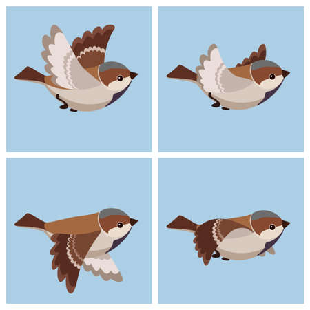 Vector illustration of cartoon flying House Sparrow (male) sprite sheet. Can be used for GIF animation Ilustração