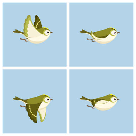 Vector illustration of cartoon flying Goldcrest (female) sprite sheet. Can be used for GIF animation Stockfoto - 122955753