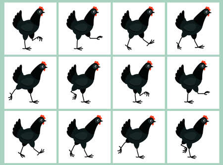 Walking black hen sprite sheet isolated on white background. Vector illustration. Can be used for GIF animation Ilustração