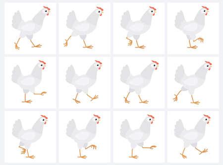 Feuille de sprite de poule blanche marche isolée sur fond blanc. Illustration vectorielle. Peut être utilisé pour l'animation GIF