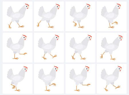 Walking white hen sprite sheet isolated on white background. Vector illustration. Can be used for GIF animation