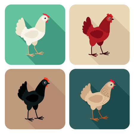 Chicken breeds icon set in flat style with long shadow. Vector illustration Stock Illustratie